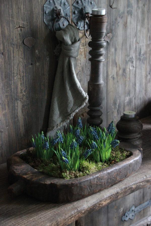 Blauwe druifjes op plateau kunst