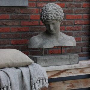 Borstbeeld Hermes op staal