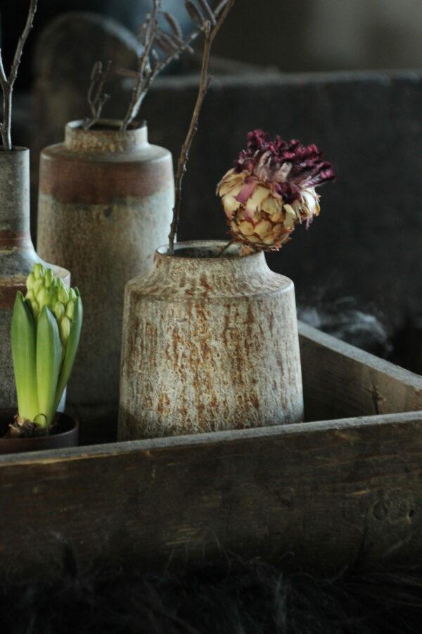 bosje Protea neriiflora