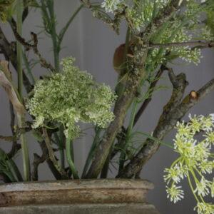 Kunstbloem Queen Ann Lace Stem