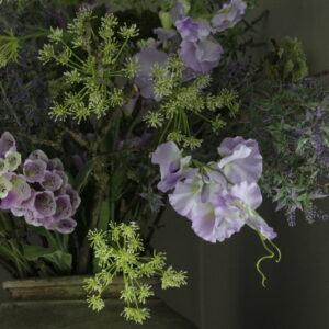 Lathyrus 100cm lila kunst